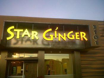 Starginger