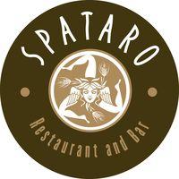 Spataro_circle1[1]